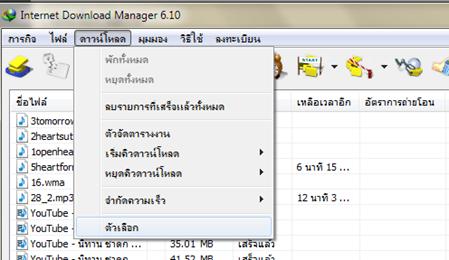 Internet manager google chrome download plugin